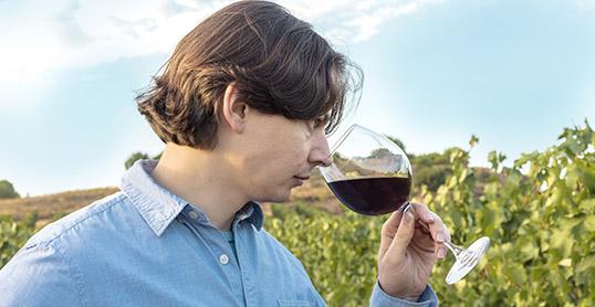 Ven a conocernos, y cata nuestros vinos